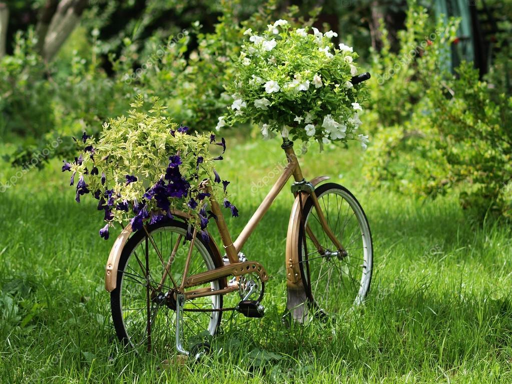bicicleta jardn vintage u foto de stock