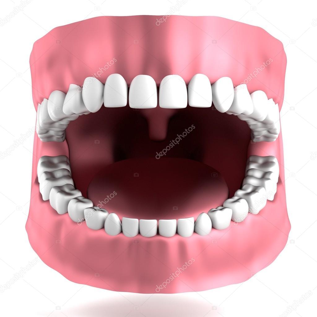 render 3d realista de dientes humanos — Fotos de Stock ...
