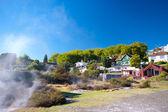 villaggio maori, rotorua
