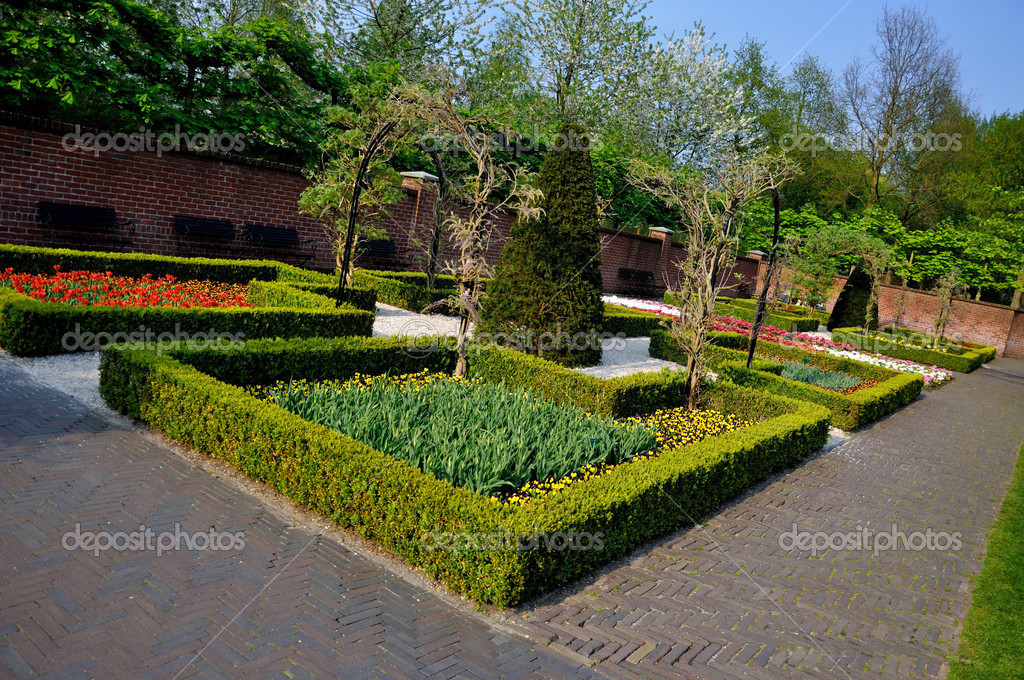 Garden with small bushes in keukenhof park in holland for Short bushes for landscaping