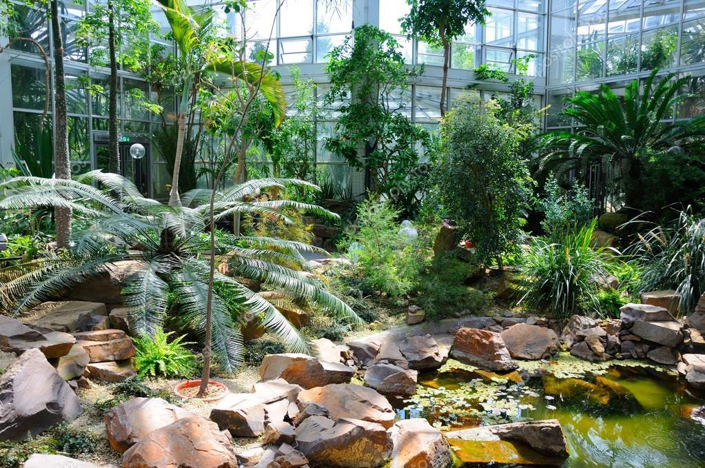 Jungles in Palmen Garten, Frankfurt am Main, Hessen, Germany