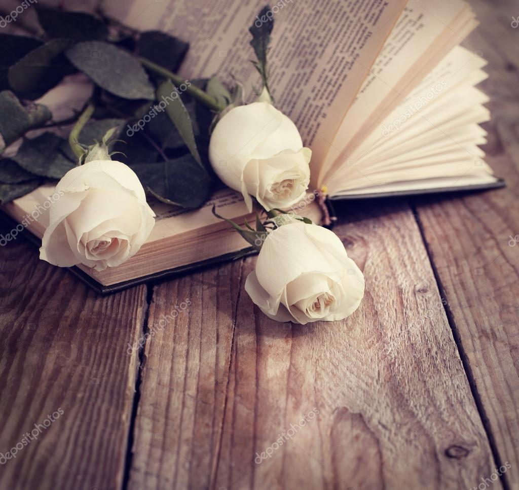 White roses on a book in a vintage style. Toned image