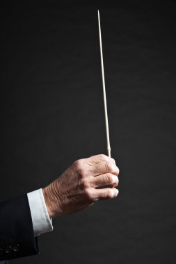 Hand of orchestra conductor in action.