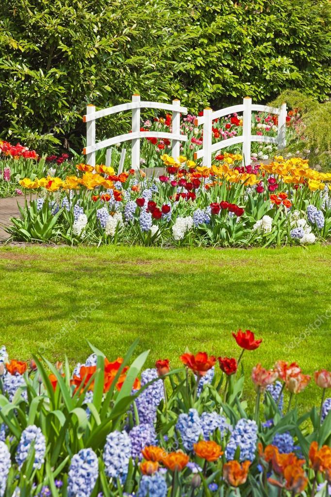 jardin fleuri avec pont blanc au printemps keukenhof lisse le photographie ysbrand 25343633. Black Bedroom Furniture Sets. Home Design Ideas