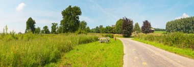 Panoramic landscape of meadow with road and trees with blue clou