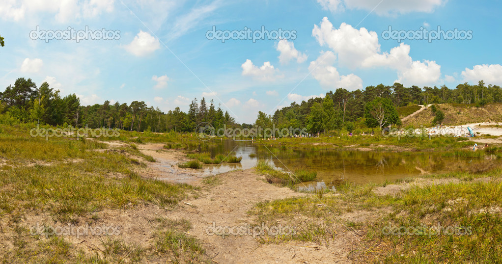 Panoramic landscape of park with lake and trees with blue cloudy