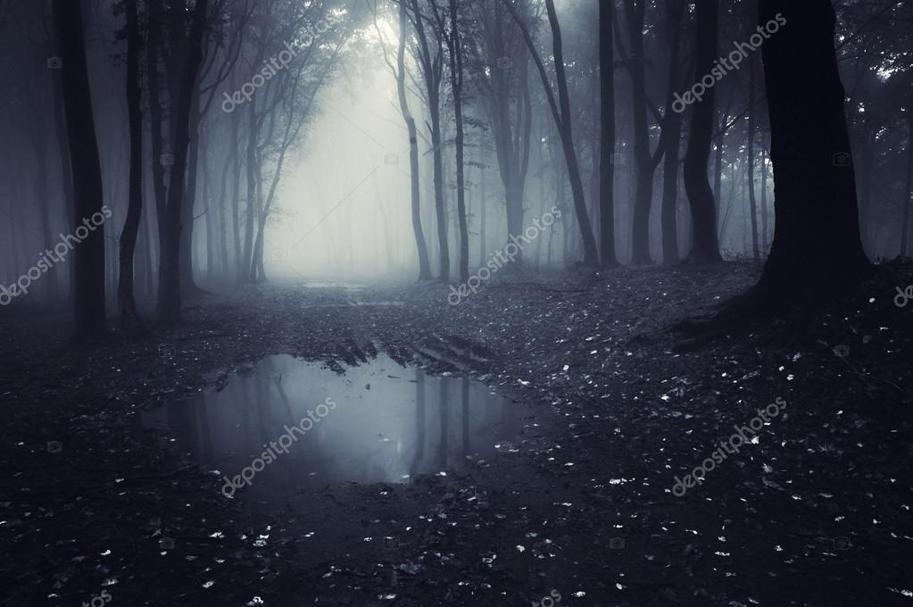 Фотообои Lake in a dark forest with fog