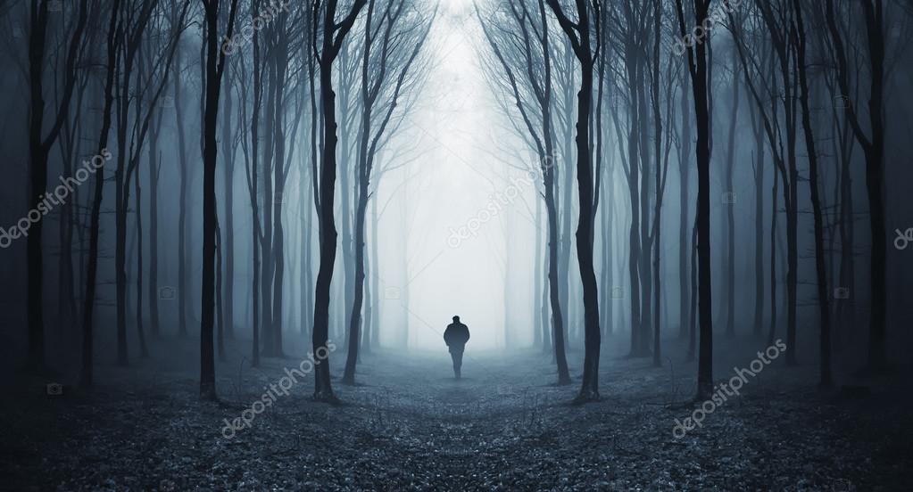 Фотообои Man walking in a mysterious surreal forest with fog