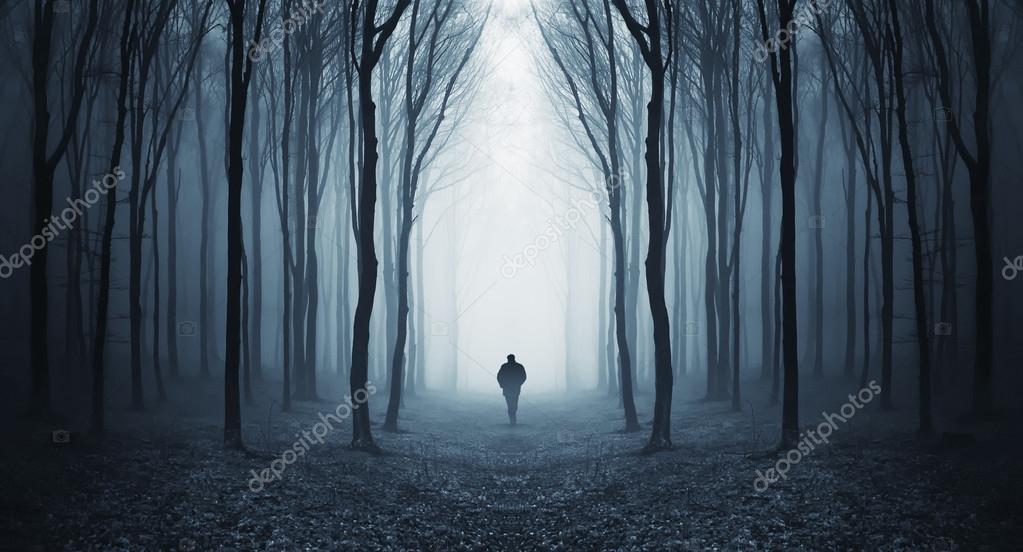 Фотообои Человек, идущий в таинственный сюрреалистический лес с туманом