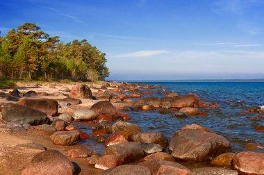 Baltic sea, stones, and sand beach.