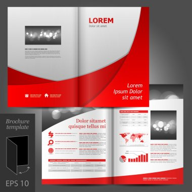 Gray brochure template design