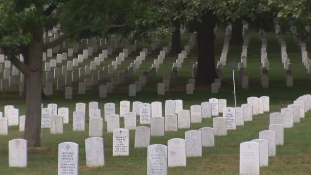 Rustic shot of Arlington Cemetery.