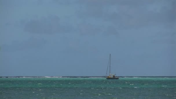 Sailboat and mangrove trees. Shot on Bonaire, Netherlands Antilles.