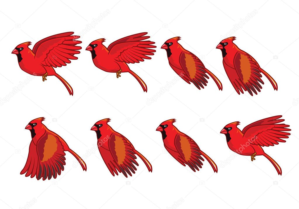 Cardinal bird flying animation stock vector gagu 38100395 for Imagenes de animacion
