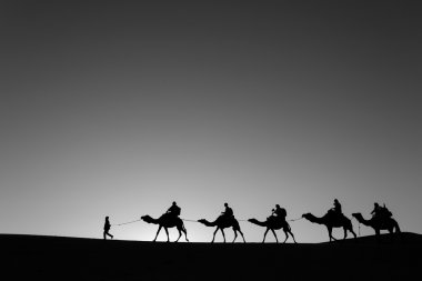 Camel caravan going through the desert black and white