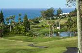 Greengolf pole na Bermudy