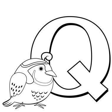 Coloring Alphabet for Kids, Q