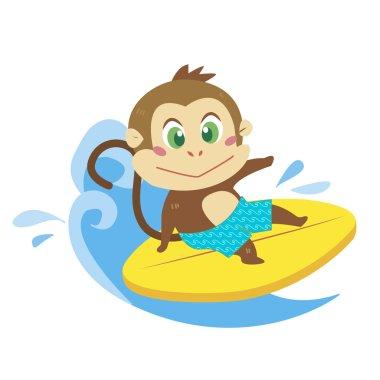 A monkey beach activities