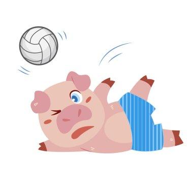 A pig beach activities