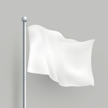3d vector white flag blank template