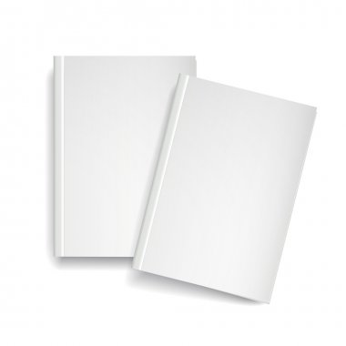 3d vector blank magazine template on white background