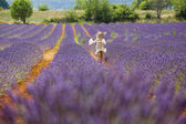 Mladá dívka běží a skoky v fialové oblasti levandule