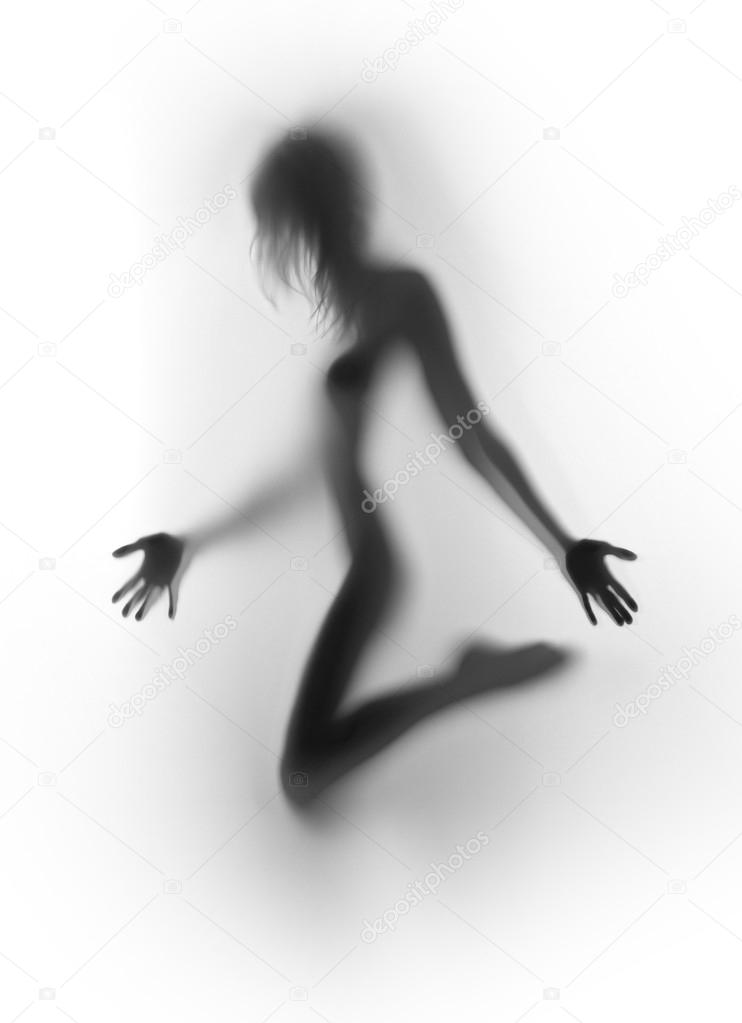 Will sexy nude girl silhouette know, how