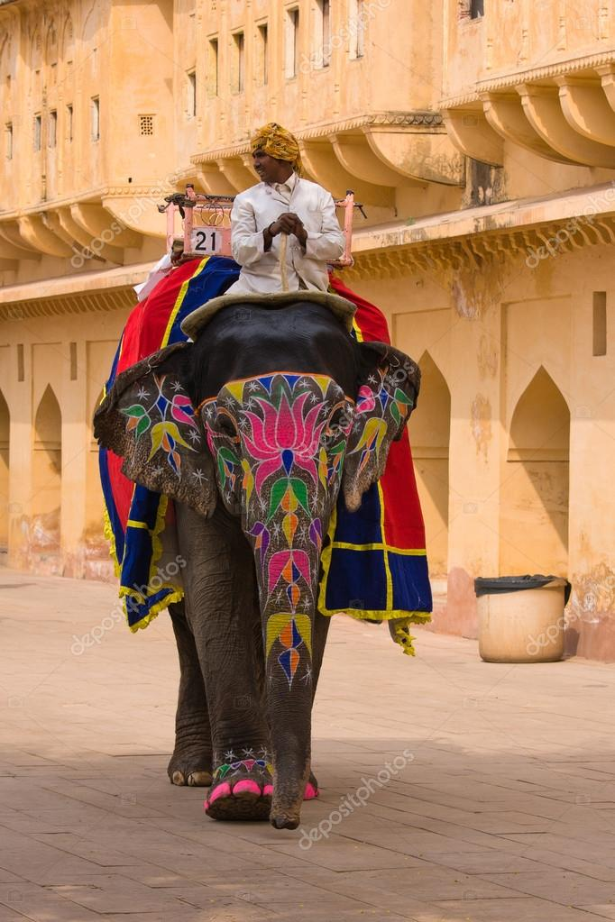 Decorated elephant in Jaipur, Rajasthan, India.