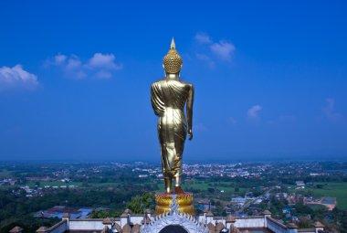 Black golden buddha statue