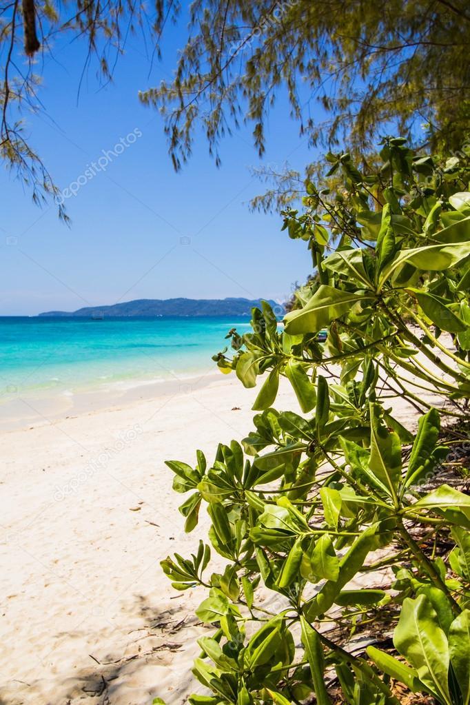 Beach and tropical sea sand