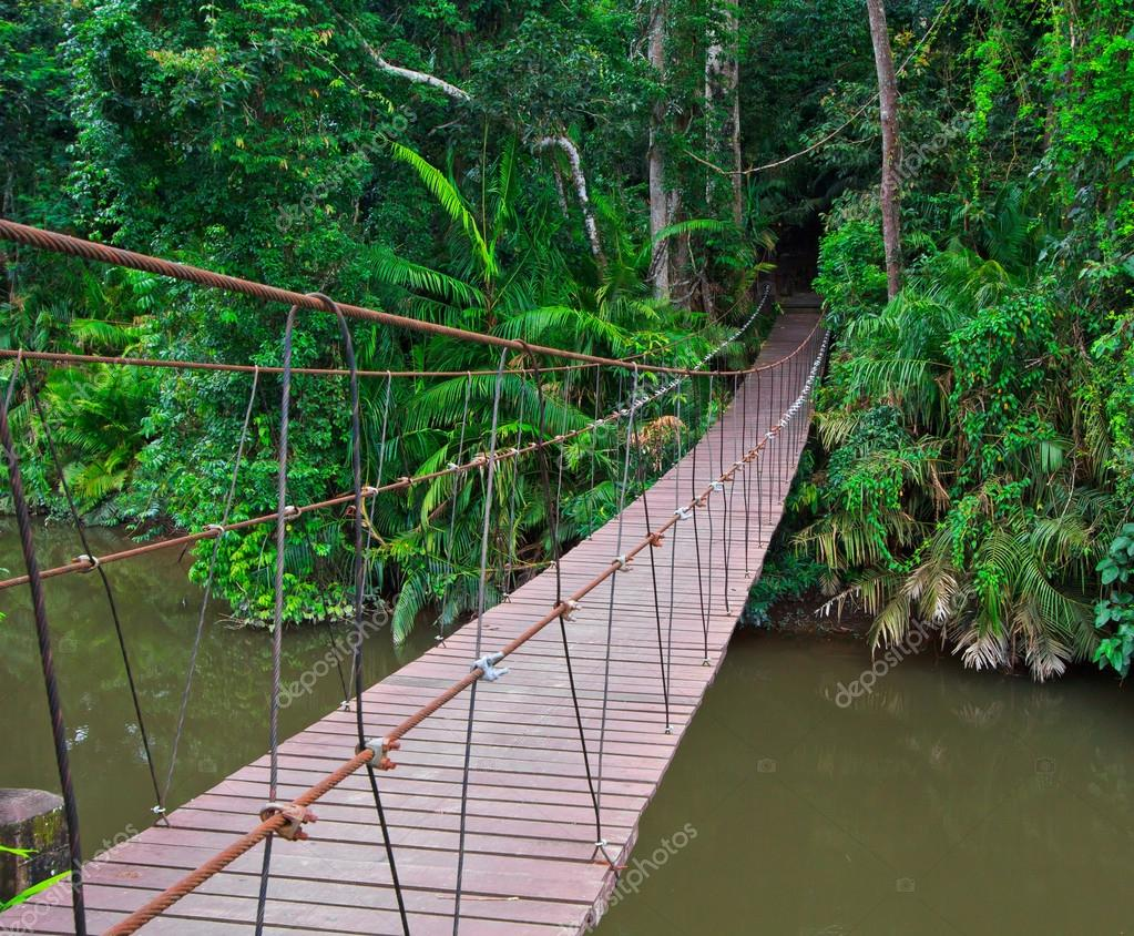 Suspension bridge