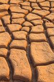 Fotografia incrinato il suolo del terreno
