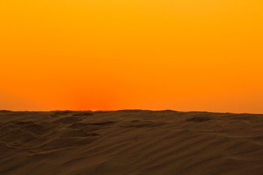 Dune view in the morning