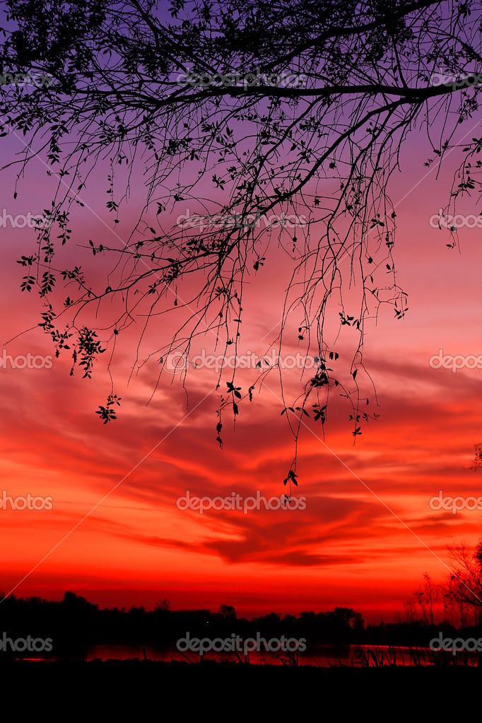 Beatiful sundown