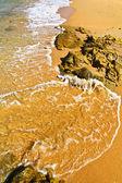 Fotografie mořské kameny