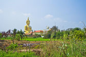 Fotografie velký buddha v chrámu
