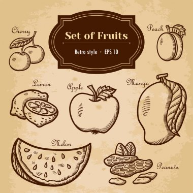 Hand drawing, retro. Healthy food. Vintage style.