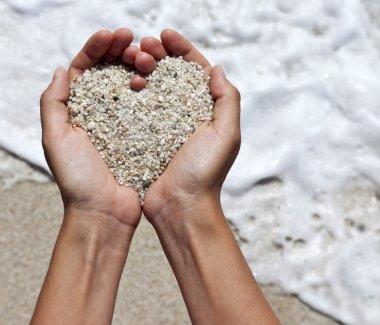 Mellow heart shaping female hands above beach stock vector