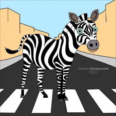 Zebra zebra crossing