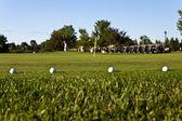 golfové míčky na praxi zelená