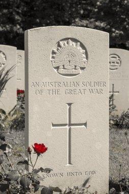 An australian soldier of the great war WW1 stock vector
