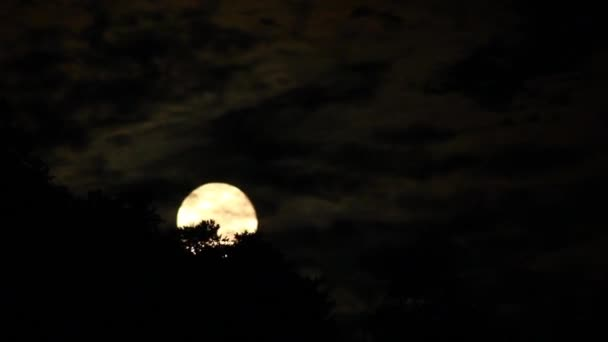Full Moon Rising Timelapse