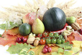Healthy organic vegetables and fruits