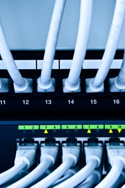 network cables and switch