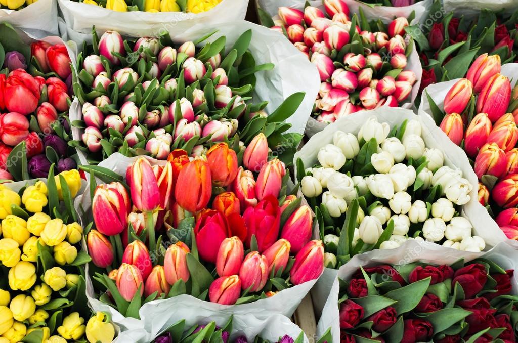 Цветы тюльпаны магнитогорск купить оптом