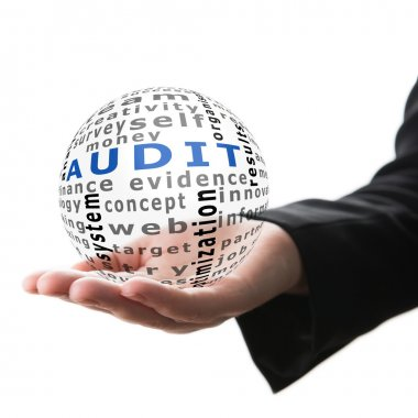 Concept of audit in business