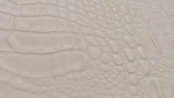pozadí textury kůže