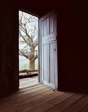 Open Door-Darkness to Light