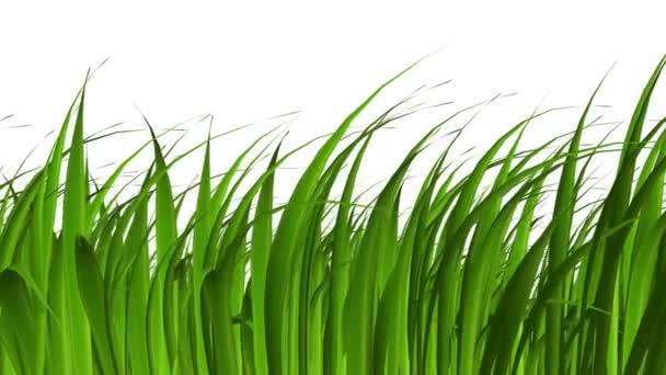 Gras bewegen