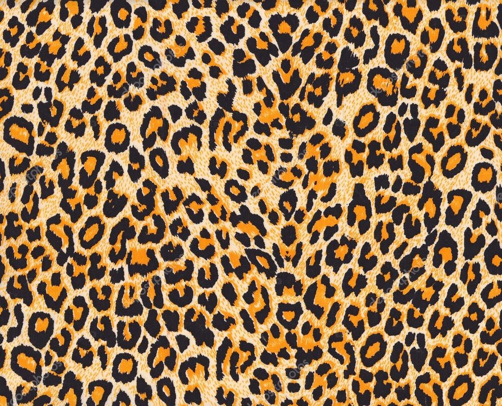 Where Does A Cheetah Live >> Leopard skin — Stock Photo © pockygallery #12649732